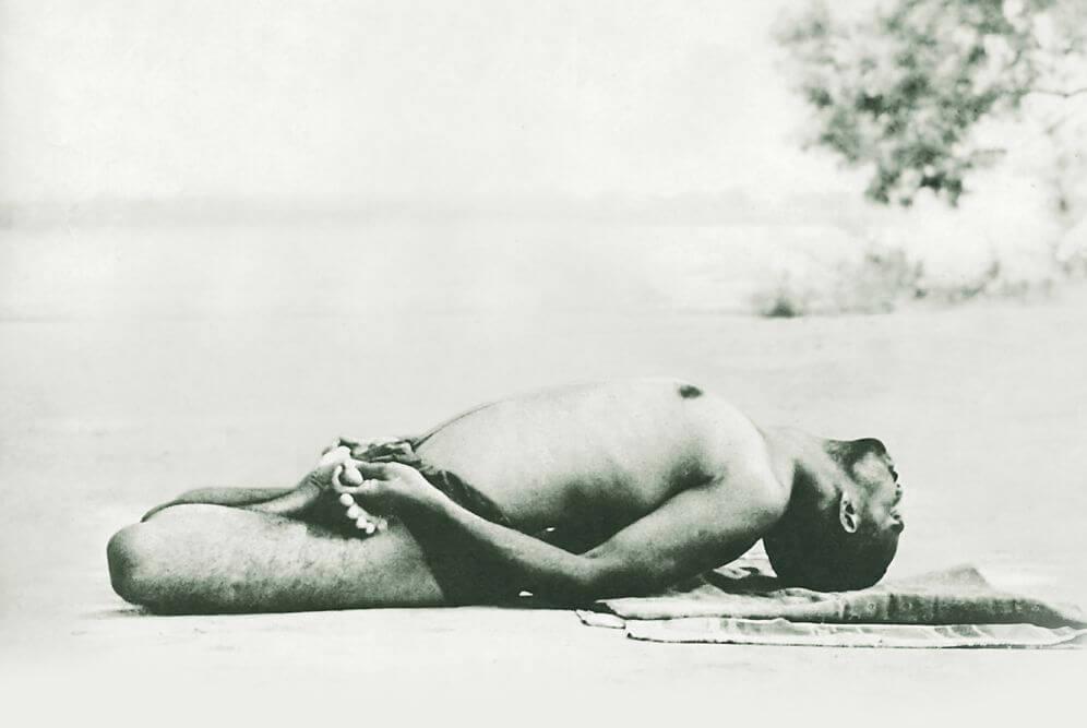 Live-Onlinekurs: Hatha-Yoga-Inspirationen 5